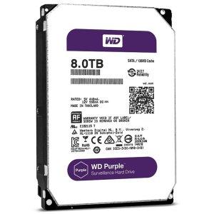8-TB-Purple-WD81PURZ
